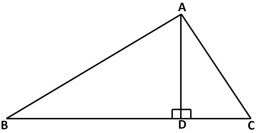 Special line segments in triangles worksheet – Area of a Triangle Worksheet