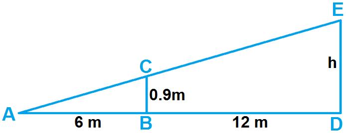finding missing measures in similar triangles worksheet. Black Bedroom Furniture Sets. Home Design Ideas