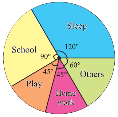 Construction Of Pie Chart