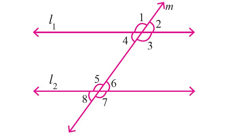 Parallel Lines And Transversal Worksheet